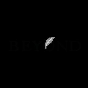 __BEYOND